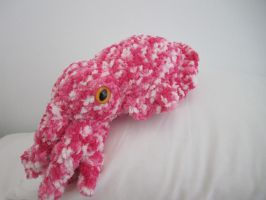 Cuddly Cuttlefish: Pink by Chromodoris