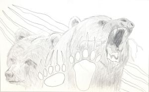 Grizzly Sketch by BJSparky
