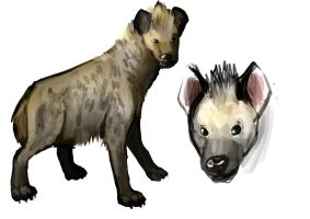 Spotted hyena doodles by R-Daza