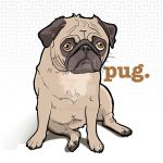 pug. by b1naryg0d