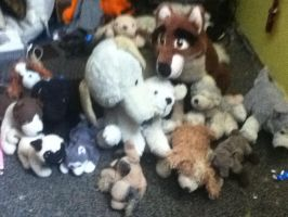 my plush collection (updated) by dogmaster22