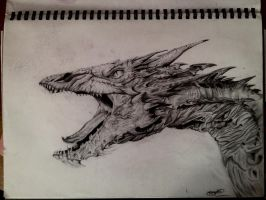 Smaug by Aimss-Art
