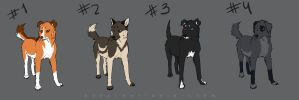 Point Adoptable. Dogs.CLOSED by azzai