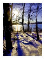 Sun after Snow by lehPhotography