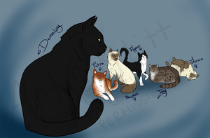 Cats in the Cradle by SunsetRevelation