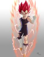 Vegeta super saiyan god by kakarotoo666