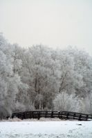 winterland 53 by priesteres-stock