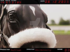 In the Movies {Scene 1} by EquusInspiration
