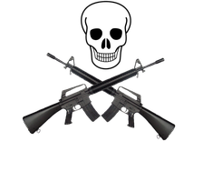 skull and cross m-16 by desithen