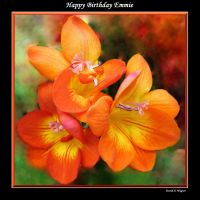 Happy Birthday Emmie by David-A-Wagner