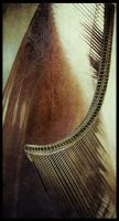 iPhoneography  Wicker by Gerald-Bostock