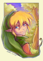 Please smile, Link by Anyarr