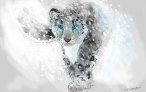 Snow Leopard by ChocolateChoco