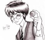 Harry Snitch by Scarlet-Adrianne