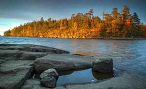 Autumn and Sigma Dp0 Quattro..Valaam Islands  _50_ by my-shots