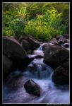 Limahuli Stream by aFeinPhoto-com
