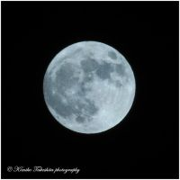 . Full Moon . by KimikoTakeshita