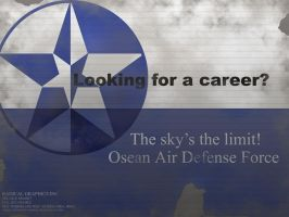 OADF Careers by Aircraftkiller