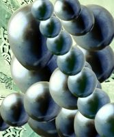 From the Future by HelaLe