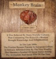 Mummified Monkey Brain 2 by DETHCHEEZ