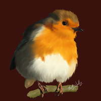 European Robin (paint study) by Vadovas