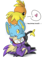 Poketower:Torchic23 happybday