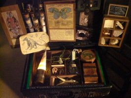 Cryptozoology Specimen Kit Teaser by Nashoba-Hostina