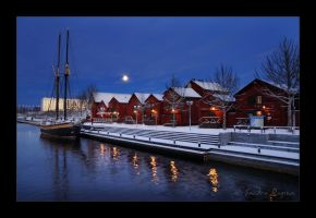 Moonlight by Behindmyblueeyes