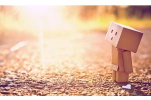 Danbo lost his Heart by I-Heart-Photo