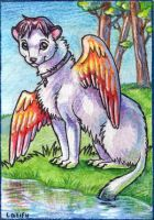 ACEO Suane by LatifuLioness