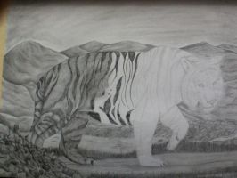 Tiger drawing WIP school project by WhingedDreamingRose
