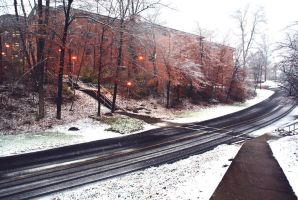 Winter Road by ippiki-wolf
