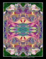 Psychedelic Rose Fold IV 302 by Eolhin