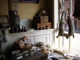 Black Country Living Museum_3 by MissSelfDestruct