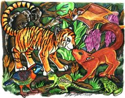 Animals of the Indian Rainfore by lemurkat
