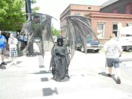 Realistic Wings Grim Reaper by SilverWolfCostuming