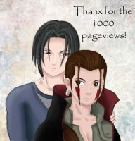 1000 pageviews by fiffiluren