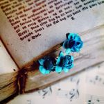 The Stories Will Blossom by cloduy