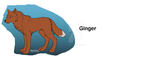 Ginger by stormwolves