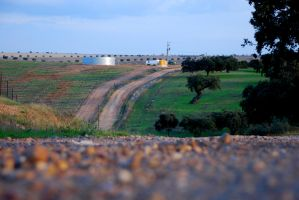 Way to Guadiana by goucha