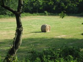 Hay Bales by Holly6669666