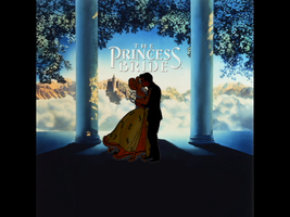 Princess Bride (Disney Addition) by JessiPan