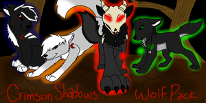 CSWP: Crimson Shadow Wolf Pack by KadoAngel13