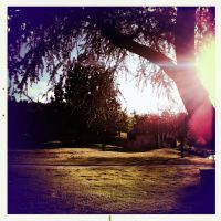 Hipstamatic At the Park 3 by Sajextryus