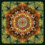 Flower of Life Fractal Mandala Green by Lilyas
