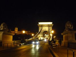 Chain Bridge n Royal Palace BUDAPEST night view by Rikitza