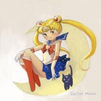 sailormoon by ninehy