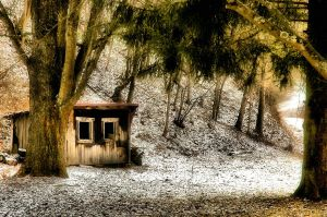 Hen House by TimLaSure