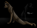 Why me? by Finchwing