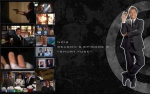 NCIS-S08E03 by Nikky81